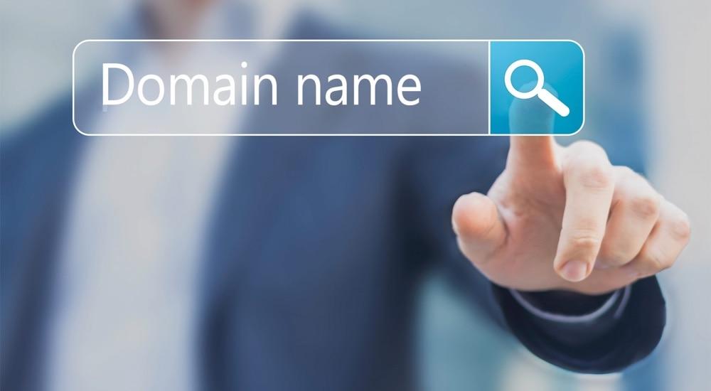 wybor-domeny